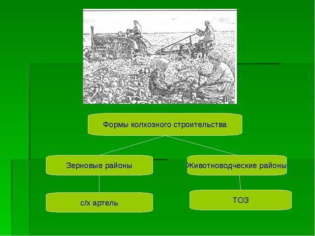 Формы колхозного строительства Зерновые районы Животноводческие районы с/х ар...