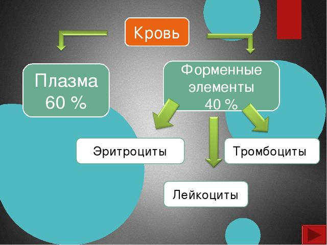 Кровь Плазма 60 % Форменные элементы 40 % Эритроциты Лейкоциты Тромбоциты