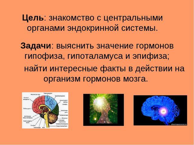Цель: знакомство с центральными органами эндокринной системы. Задачи: выяснит...