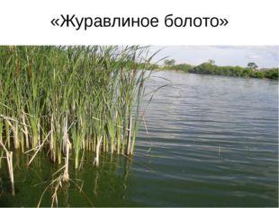 «Журавлиное болото»