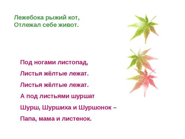 Лежебока рыжий кот, Отлежал себе живот. Под ногами листопад, Листья жёлтые ле...