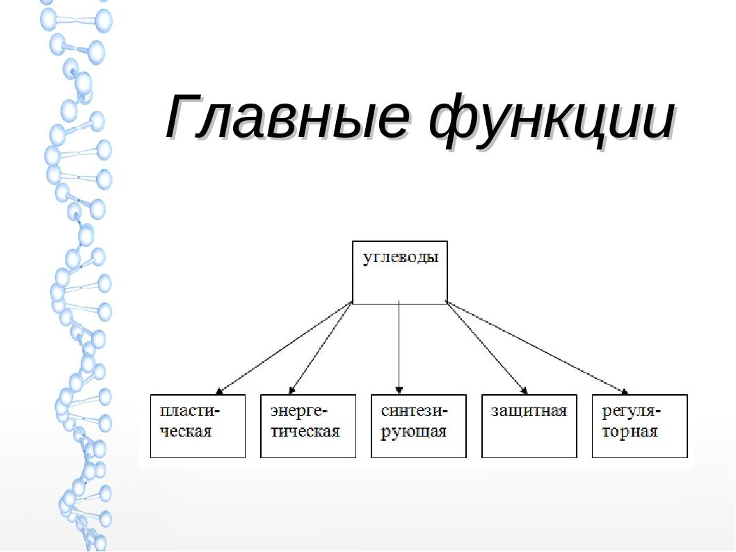 Главные функции