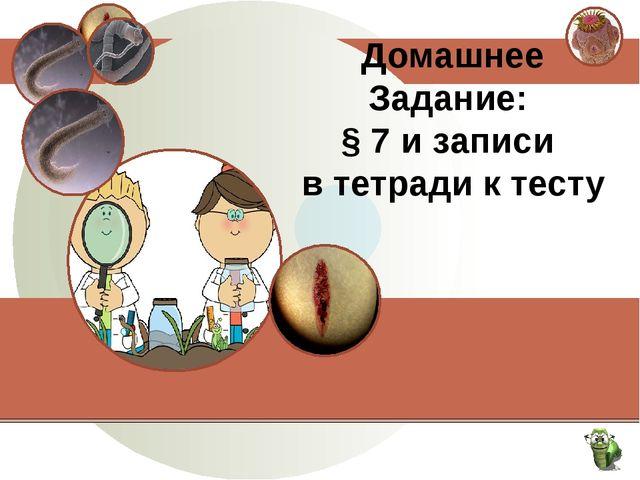 Домашнее Задание: § 7 и записи в тетради к тесту
