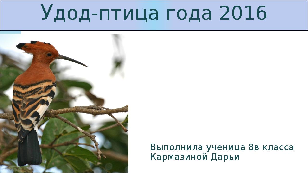 Удод-птица года 2016 Выполнила ученица 8в класса Кармазиной Дарьи