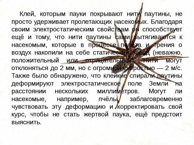 Клей, которым пауки покрывают нити паутины, не просто удерживает пролетающих...