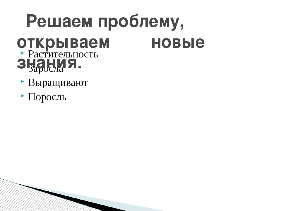 Растительность Заросла Выращивают Поросль Решаем проблему, открываем  новые...