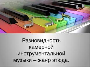 Разновидность камерной инструментальной музыки – жанр этюда.