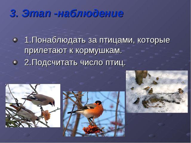 3. Этап -наблюдение 1.Понаблюдать за птицами, которые прилетают к кормушкам....