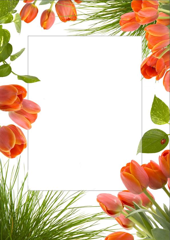 hello_html_m6c02d30d.jpg
