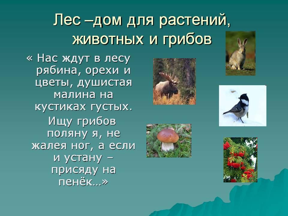 hello_html_5432c88f.jpg