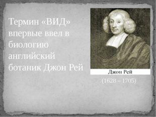 Термин «ВИД» впервые ввел в биологию английский ботаник Джон Рей (1628 – 1705)