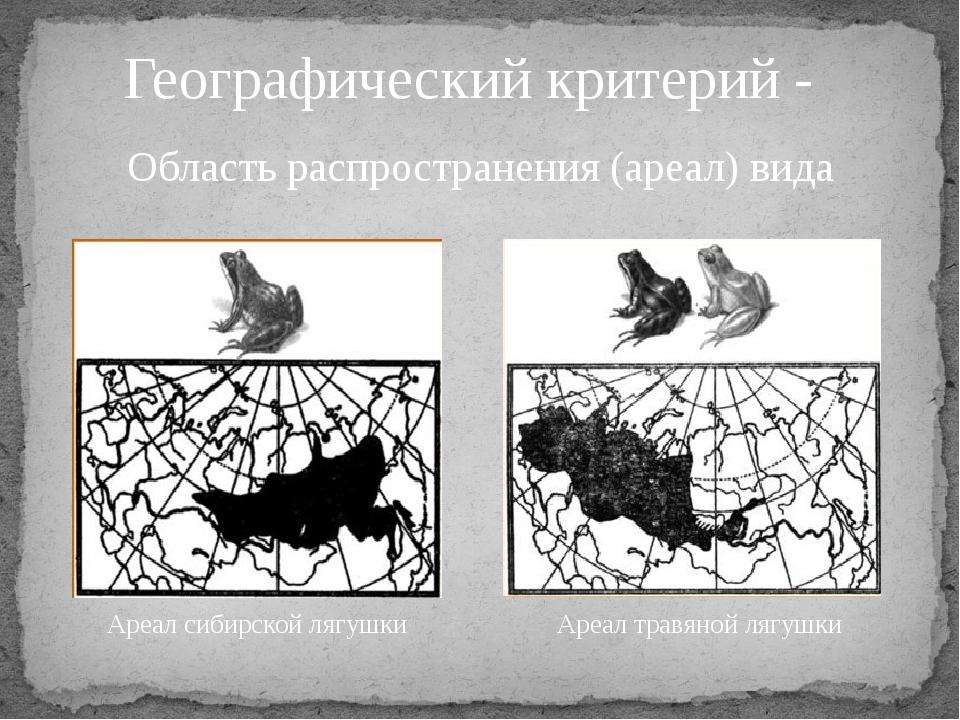Географический критерий - Область распространения (ареал) вида Ареал сибирско...