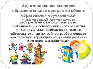 Адаптированная основная образовательная программа общего образования обучающи