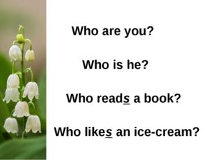 Who are you? 			 Who is he?			 Who reads a book?		 Who likes an ice-cream?