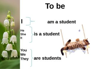 To be I am a student He She It You We They is a student are students