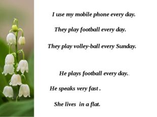 I use my mobile phone every day. They play football every day. They play voll