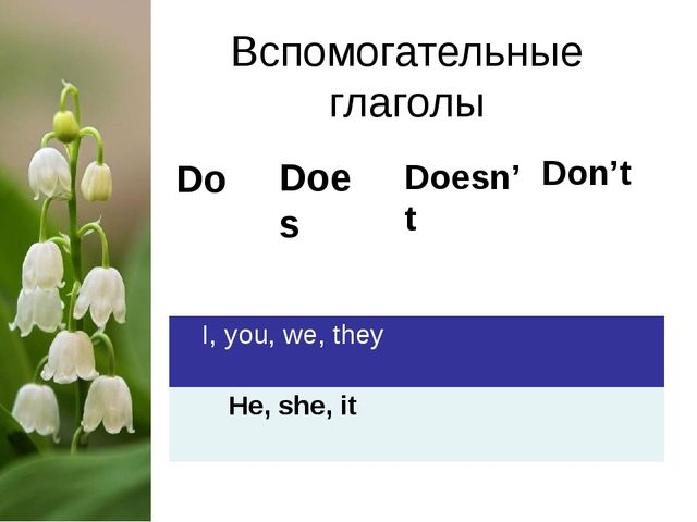 Вспомогательные глаголы Do Does Don't Doesn't I,you, we, they He, she, it