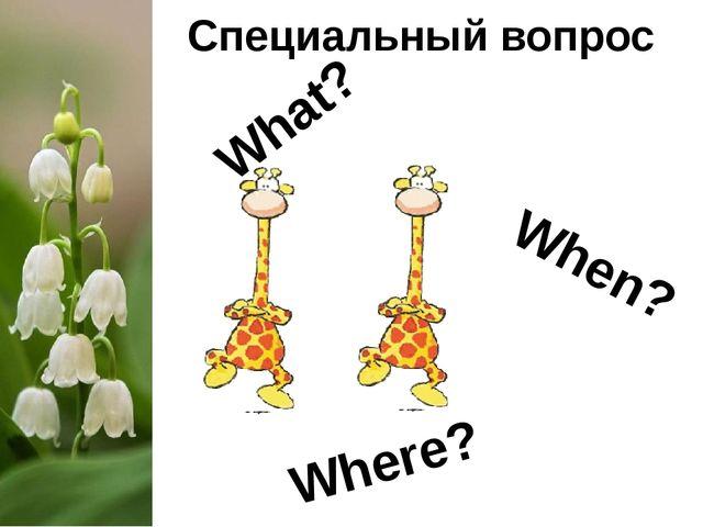 Специальный вопрос What? When? Where?