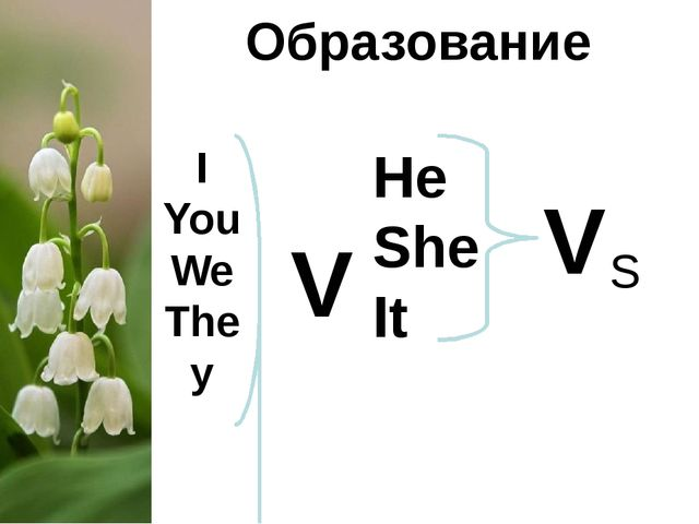 Образование I You We They V He She It V S