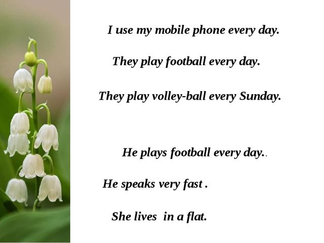 I use my mobile phone every day. They play football every day. They play voll...