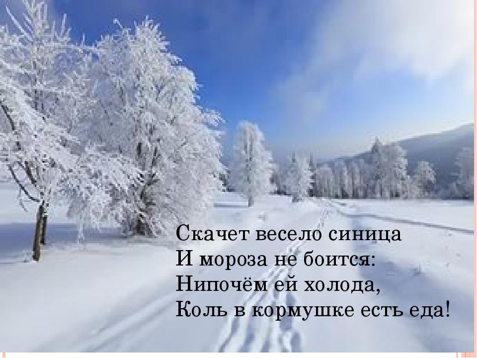 Скачет весело синица И мороза не боится: Нипочём ей холода, Коль в кормушке е...