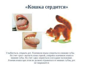 «Кошка сердится» Улыбнуться, открыть рот. Кончиком языка упереться в нижние