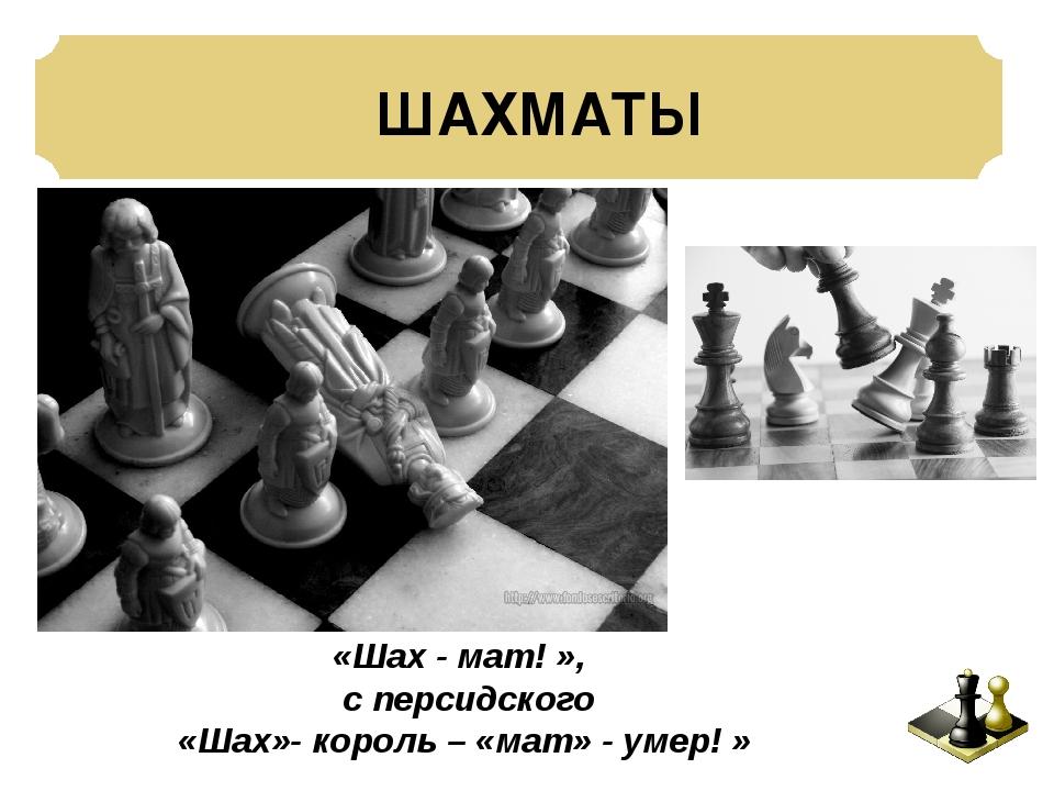 ШАХМАТЫ «Шах - мат! », с персидского «Шах»- король – «мат» - умер! »
