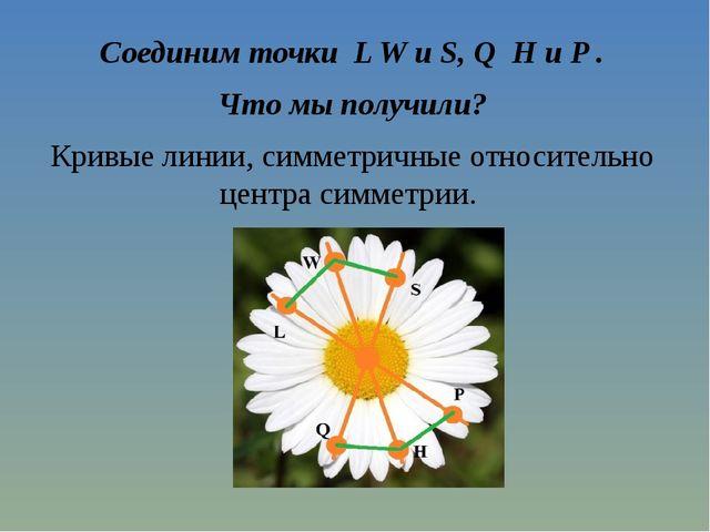 Соединим точки L W и S, Q H и P . Что мы получили? Кривые линии, симметричные...