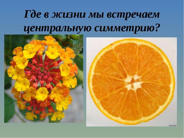 Где в жизни мы встречаем центральную симметрию?
