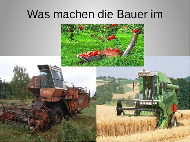 Was machen die Bauer im Sommer?