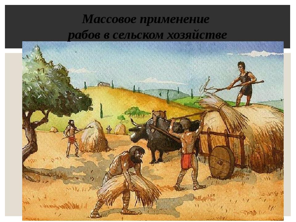 Массовое применение рабов в сельском хозяйстве