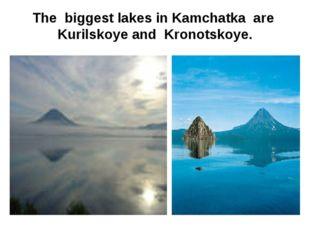 The biggest lakes in Kamchatka are Kurilskoye and Kronotskoye.