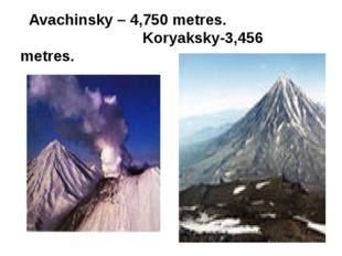 Avachinsky – 4,750 metres. Koryaksky-3,456 metres.