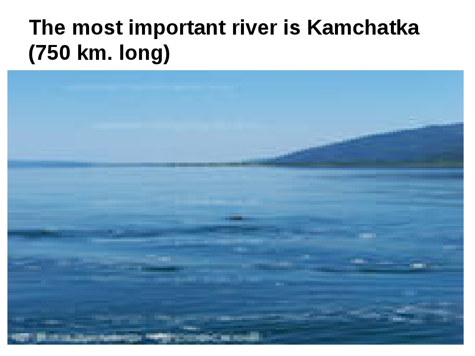The most important river is Kamchatka (750 km. long)