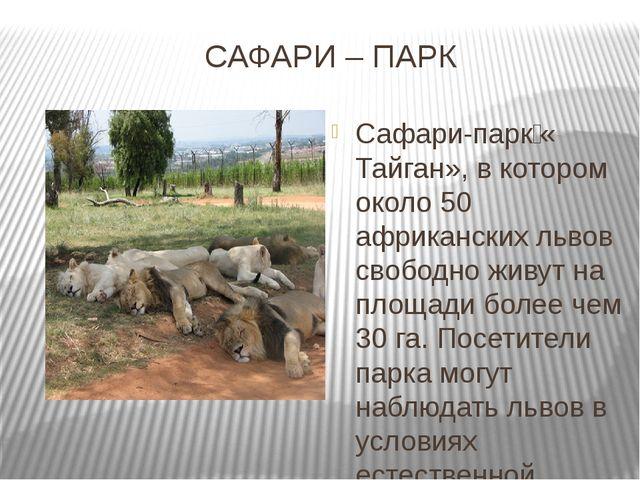 САФАРИ – ПАРК Сафари-парк«Тайган», в котором около 50 африканских львов сво...