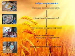 об истории возникновения хлеба о труде людей создавших хлеб собрать информаци