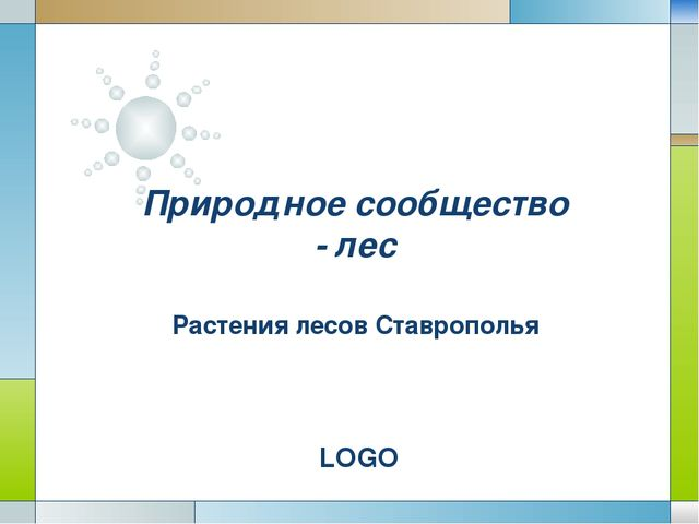 Природное сообщество - лес Растения лесов Ставрополья LOGO