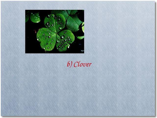 b) Clover