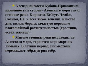 В северной части Кубано-Приазовской низменности в сторону Азовского моря теку