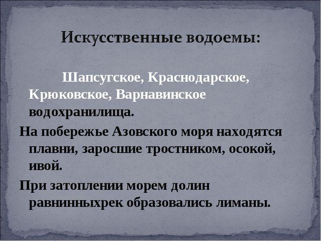 Шапсугское, Краснодарское, Крюковское, Варнавинское водохранилища. На побере...