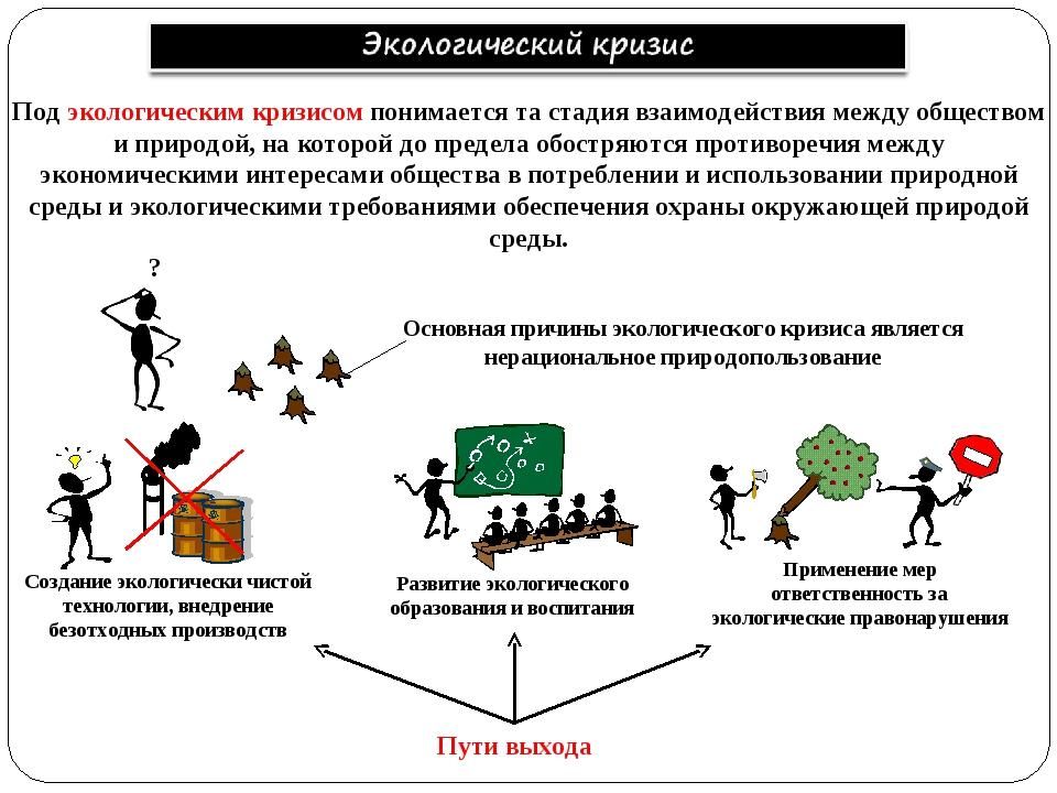 Под экологическим кризисом понимается та стадия взаимодействия между общество...
