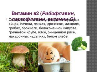 Витамин в2 (Рибофлавин, лактофлавин, витамин G) Содержится в мясных продукта