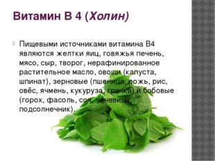 Витамин В 4 (Холин) Пищевыми источниками витамина В4 являются желтки яиц, гов