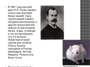 В 1881 году русский врач Н.И. Лунин провел опыты над группами белых мышей. Од