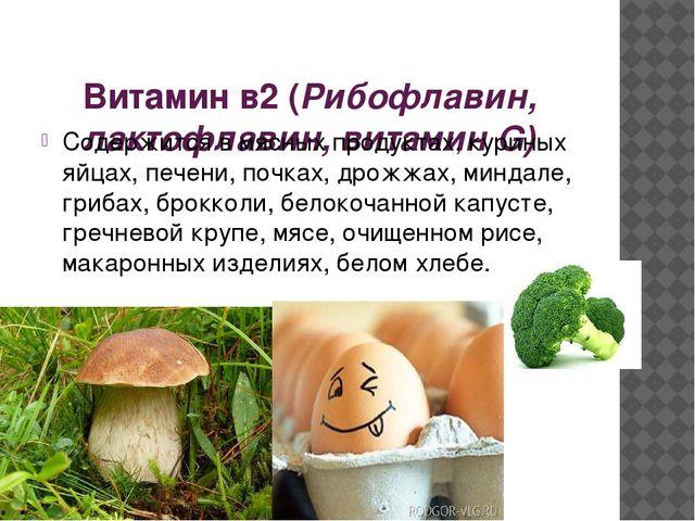 Витамин в2 (Рибофлавин, лактофлавин, витамин G) Содержится в мясных продукта...