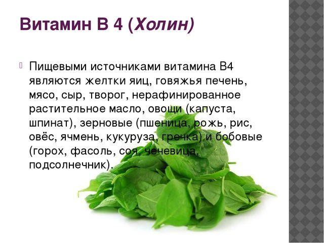 Витамин В 4 (Холин) Пищевыми источниками витамина В4 являются желтки яиц, гов...
