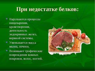 При недостатке белков: Нарушаются процессы пищеварения, кроветворения, деятел