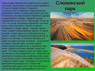 Словинский парк Один из двух приморских национальных парков в Польше, располо