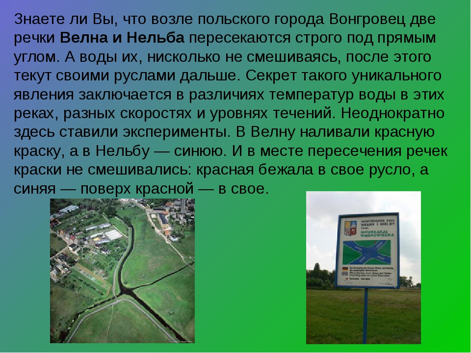 Знаете ли Вы, что возле польского города Вонгровец две речки Велна и Нельба п...