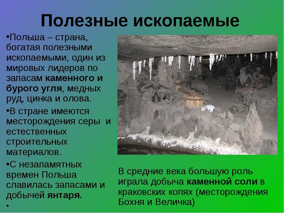 Полезные ископаемые Польша – страна, богатая полезными ископаемыми, один из м...